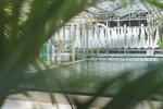 Windcloud Rechenzentrum CO2-frei Green IT Algenfarm