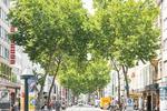 Karlsruhe will Alltag klimafreundlicher machen