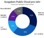 Ausgaben Public Cloud pro Jahr...