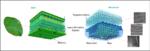 Die Grafik zeigt den Aufbau der Biosensoren, der sich an die Blattstruktur anlehnt.