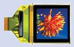 OLEDs, auch in kleinen Stückzahlen