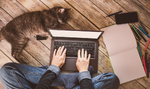 Mobil und flexibel: Ohne Notebooks geht nichts mehr