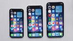 Apple bringt iPhone12 in vier Größen