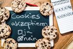 So will Schrems die Cookie-Banner abschaffen
