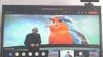 Epson Deutschland zieht positive Bilanz: Rotkehlchen hilft Epson durch Corona-Krise