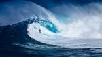 So kann jeder sicher surfen