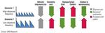 IBM stellt Tool für Ermittlung des CO2-Ausstoßes vor