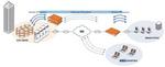 WAN-Beschleuniger von Riverbed als Plattform für Applikationen in Zweigstellen