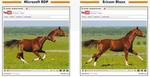 Ericom macht RDP auch bei Vmwares »View« Beine