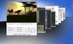 Bilder richtig skalieren für Web und Co