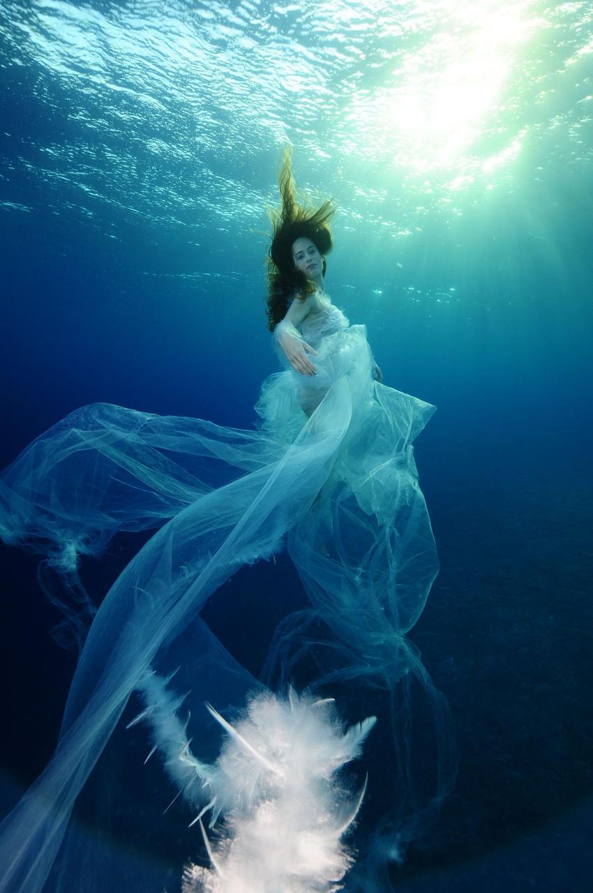Epson Fotowettbewerb Red Sea: Nackte Schönheiten unter