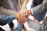 Soziale Software für bessere Zusammenarbeit