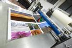 IDC: Drucker-Verkäufe massiv eingebrochen