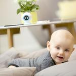 Neue Kameras haben Schützlinge im Blick