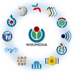 Google-Löschanträge auf Wikipedia