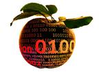 Moskau will Quellcodes von Apple und SAP