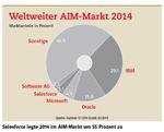 Middleware-Markt legt um 8,8 Prozent zu