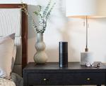 Amazons Echo soll Unternehmen erobern