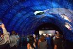 IFA 2017 endet mit Besucherrekord