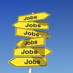 IT-Branche schafft 2017 über 20.000 neue Jobs
