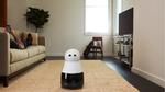 Dieser Roboter bringt Freude ins Haus