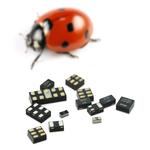 Qualcomm prüft Kauf von NXP