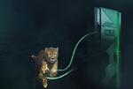 Infinidat fordert All-Flash-Arrays heraus
