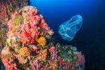 Samsung sagt Plastikmüll den Kampf an