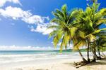 Verkaufstalente fliegen nach Jamaika