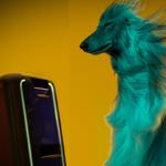 Gadget für Party-Animals