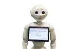 Roboter als Werkzeug für Remote Support